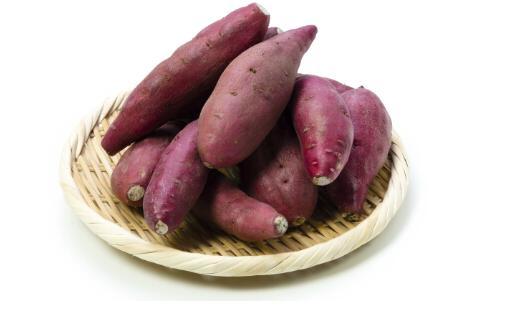 冬天进补多吃红薯 9种进补食物不可少