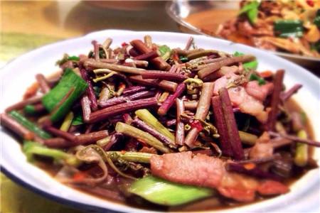 蕨菜怎么做好吃,推荐四种做法