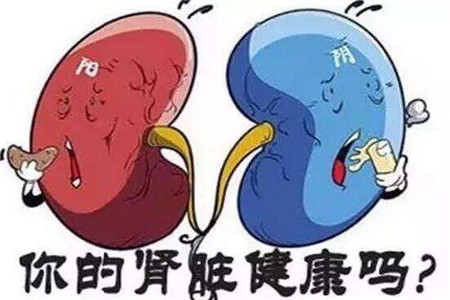 你的肾脏健康吗,世界肾脏日教你预防肾病