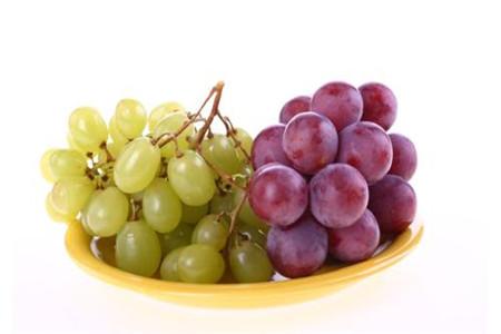 孕妇能不能吃葡萄,葡萄的饮食原则
