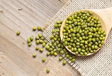绿豆长虫了还能吃吗 绿豆怎么储存才不会长虫呢